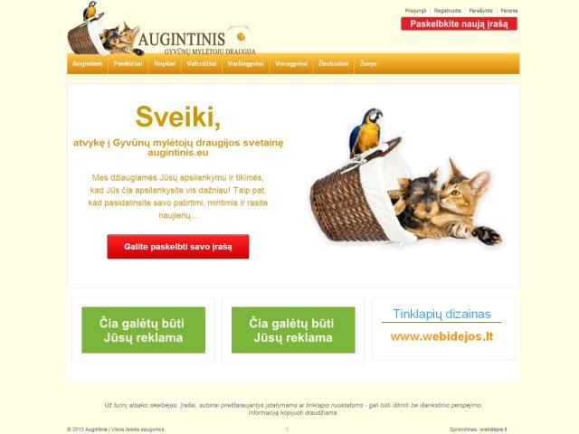Internetinės svetainės sukūrimas
