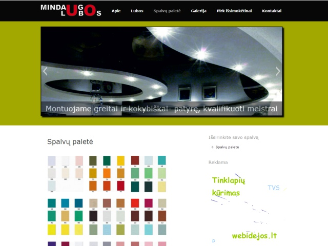 Tinklapio dizainas, TVS įdiegimas